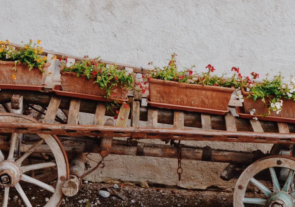 Jardinières en terre cuite / Federica Gusti / Unsplash